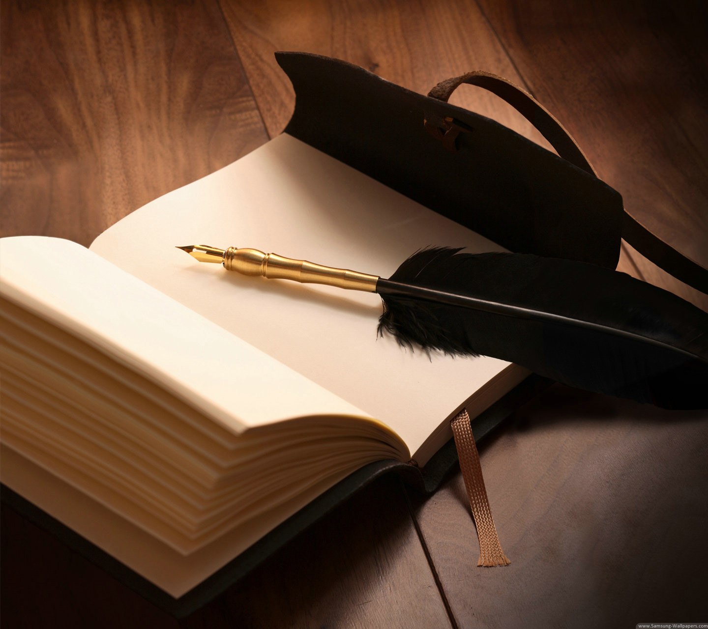 Feather Quill on open Journal