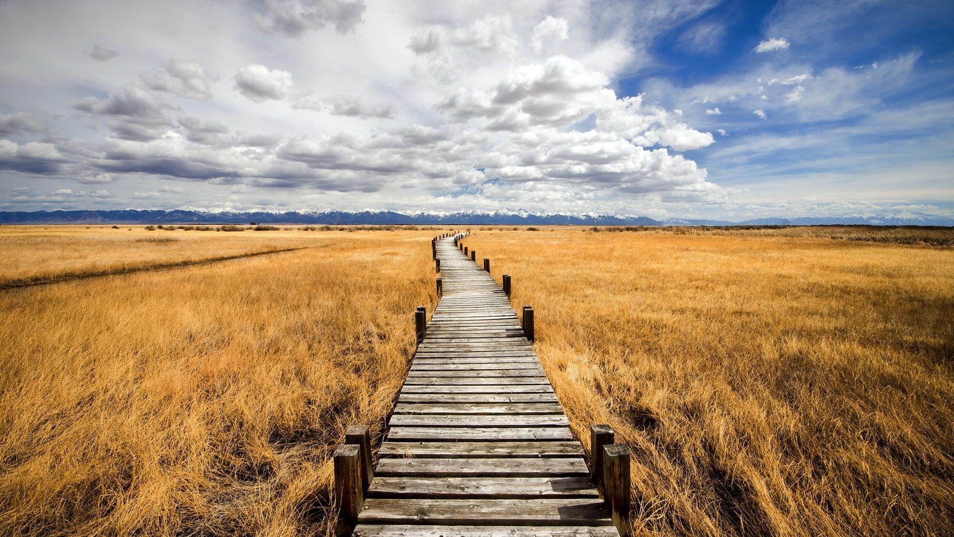 bkg prairie